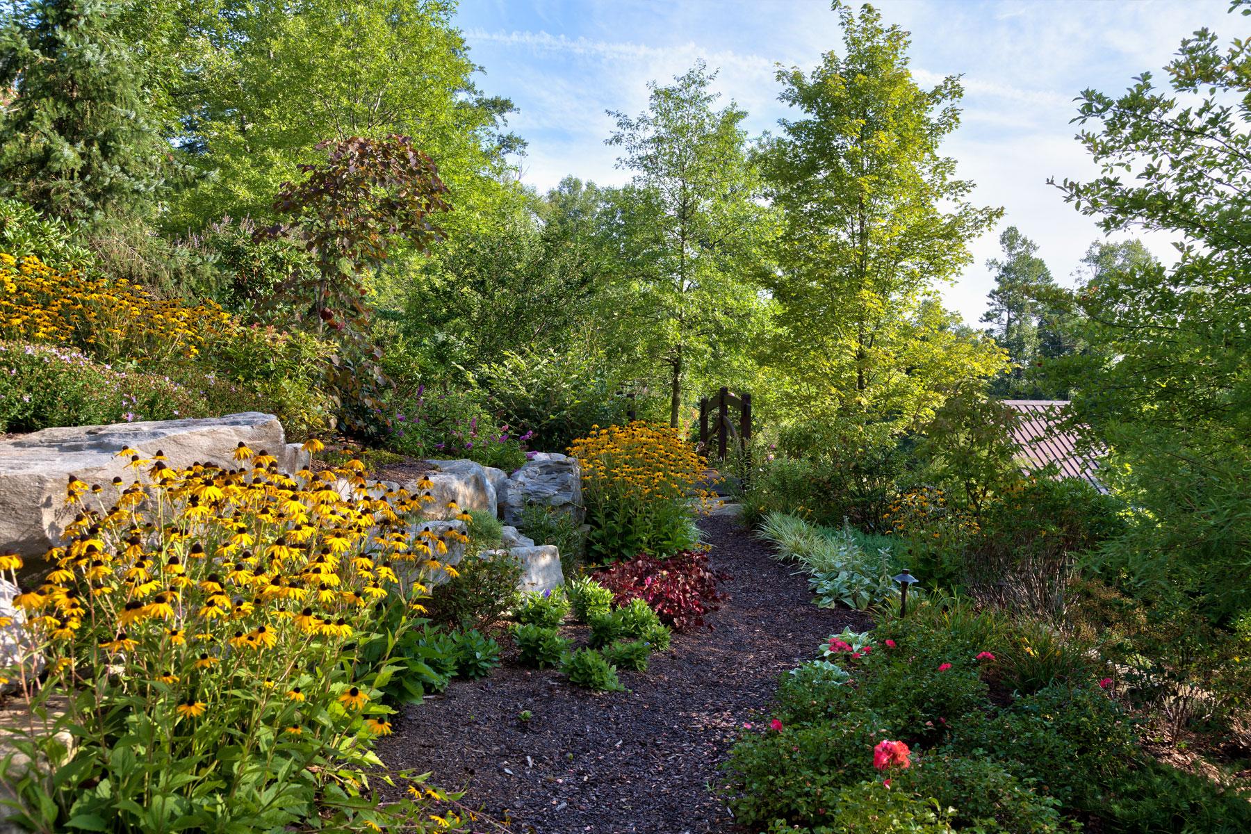 Estate home landscaping, Asheville
