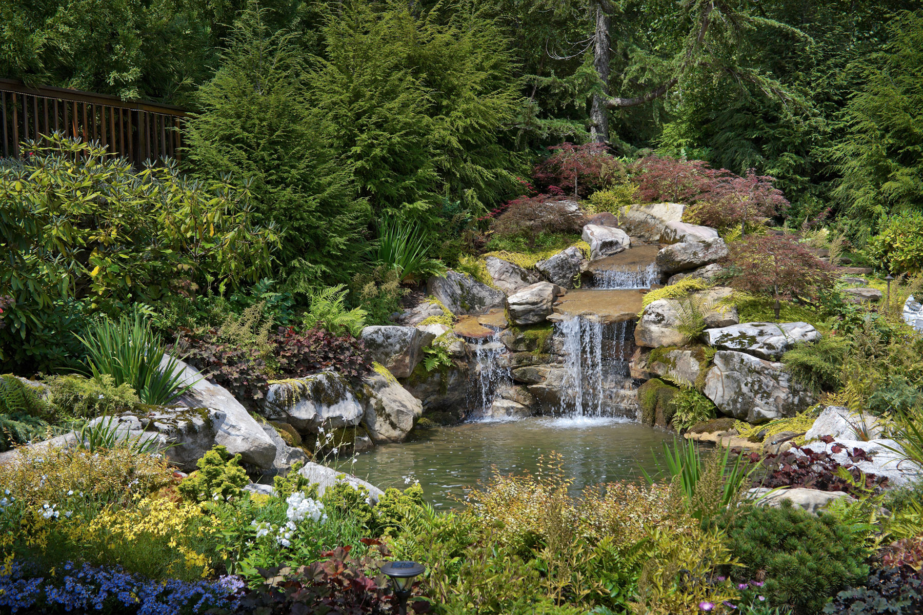 Fish pond water feature